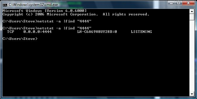 Netstat output from exploiting LTER